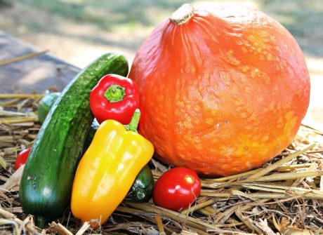 leaf, food, vegetable, pumpkin, paprika, tomato, fruit, vegetarian
