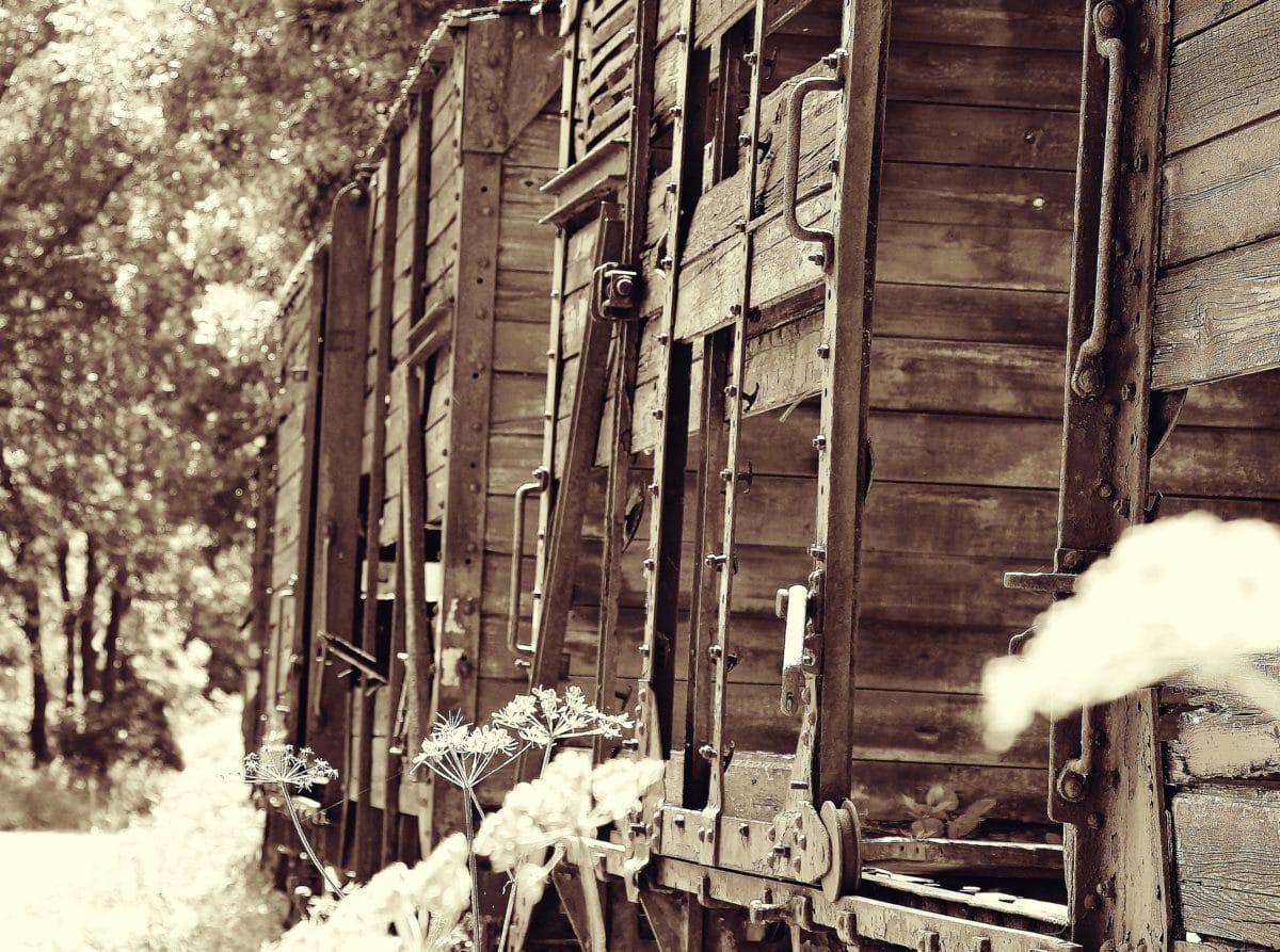 monochrome, wagon, rail, transport, sepia, old, outdoor