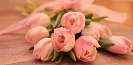 flower, pink, rose, bouquet, petal, tulip, indoor
