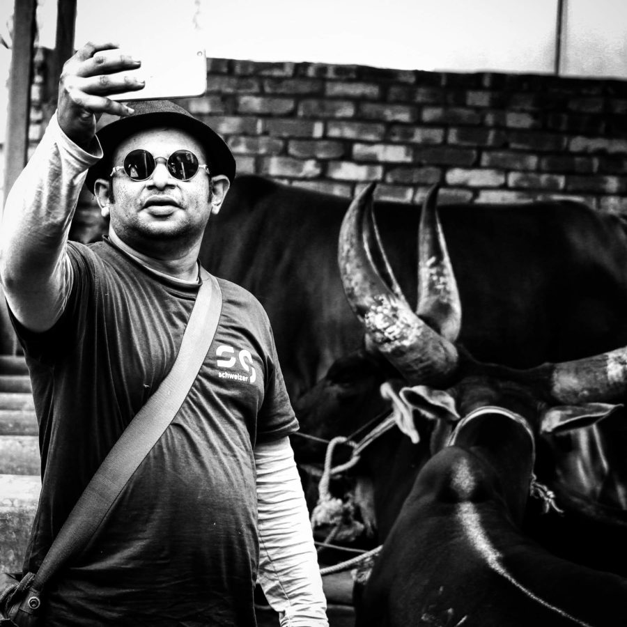 πορτρέτο, άνθρωπος, μονόχρωμος, βοοειδή, πρόσωπο, καπέλο, Υπαίθριος, μεγάλο κέρατο, αγελάδα