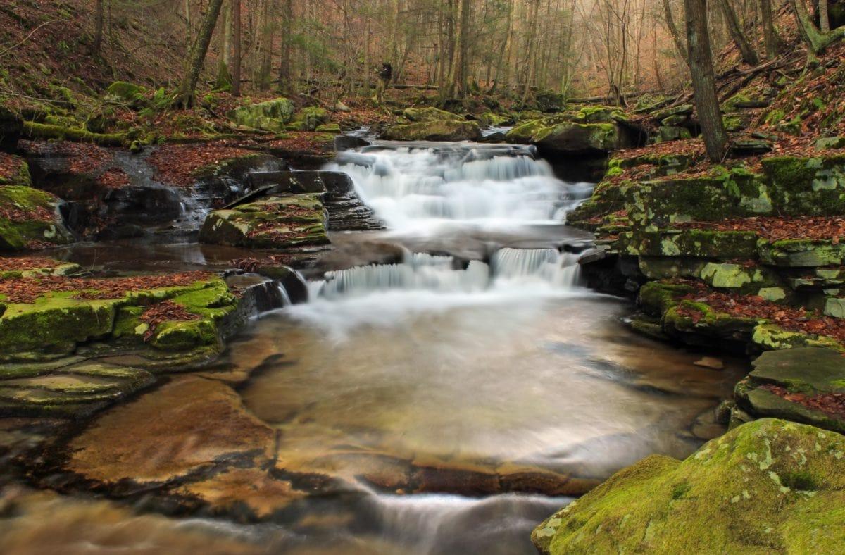 natur, landskab, Creek, vandfald, flod, vandløb, vand, økologi