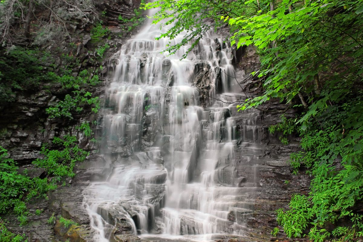 waterfall, nature, landscape, wood, leaf, stream, water, fountain