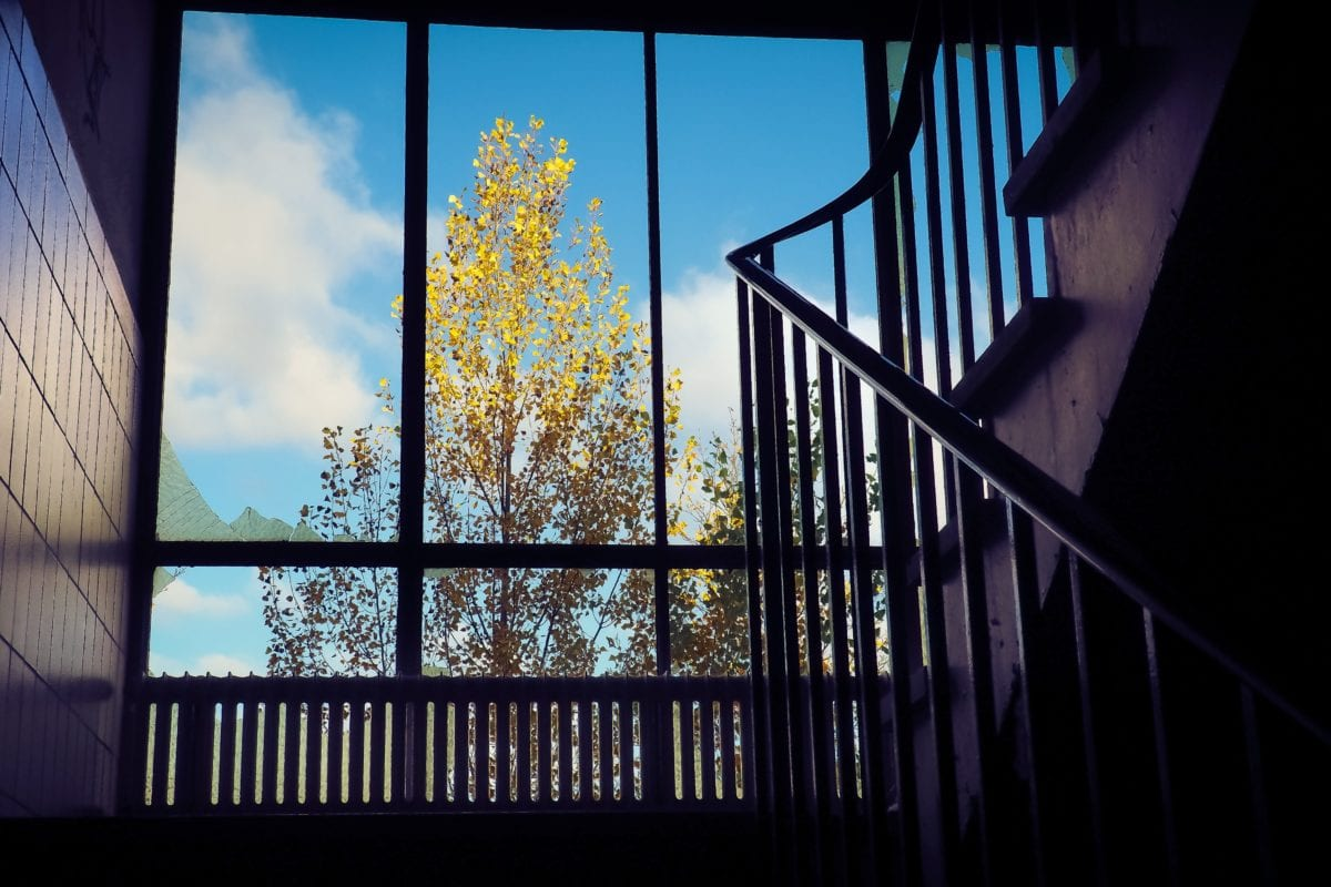 window, structure, staircase, shadow, stairs