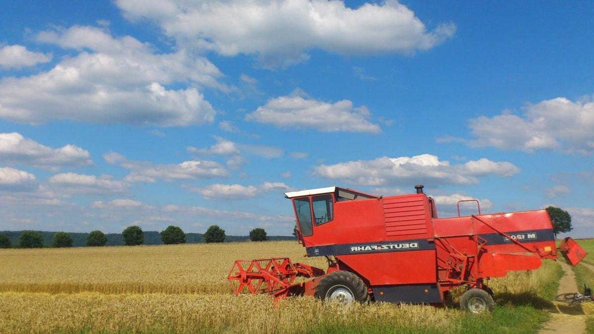 terén, poľnohospodárstvo, vidiek, obilniny, stroje, vozidlá, modrá obloha, pole