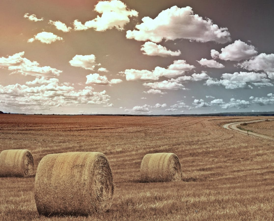 haystack, countryside, straw, summer, agriculture, field, landscape