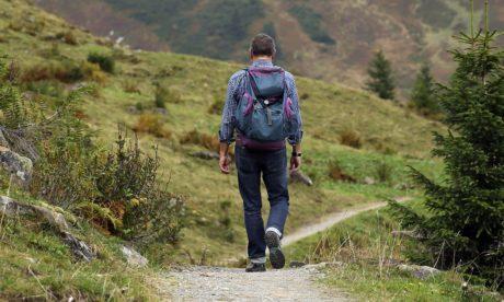 landskab, vandretur, natur, rygsæk, eventyr, bjerg, mand, udendørs