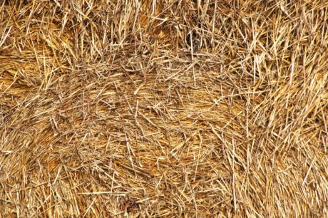 detail, dry, haystack, pattern, straw, yellow, summer