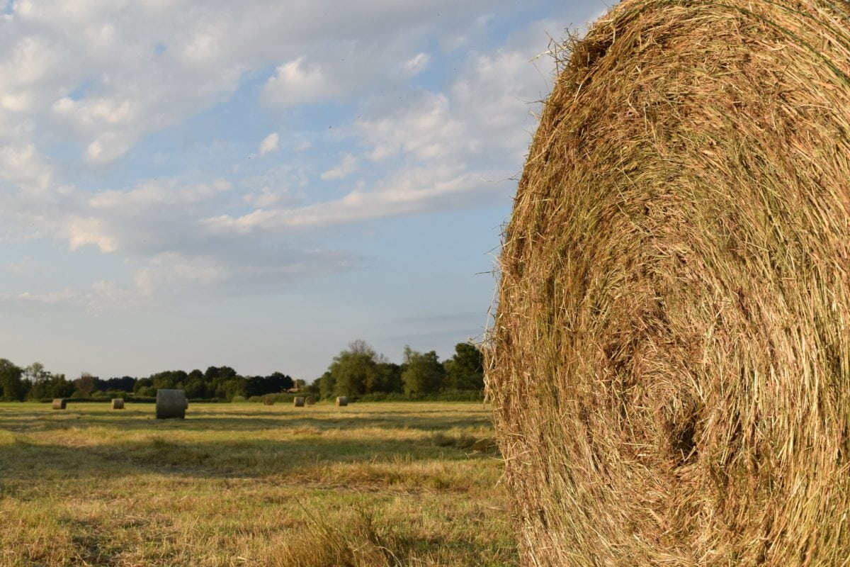 landscape, field, countryside, haystack, straw, agriculture, cloud, meadow