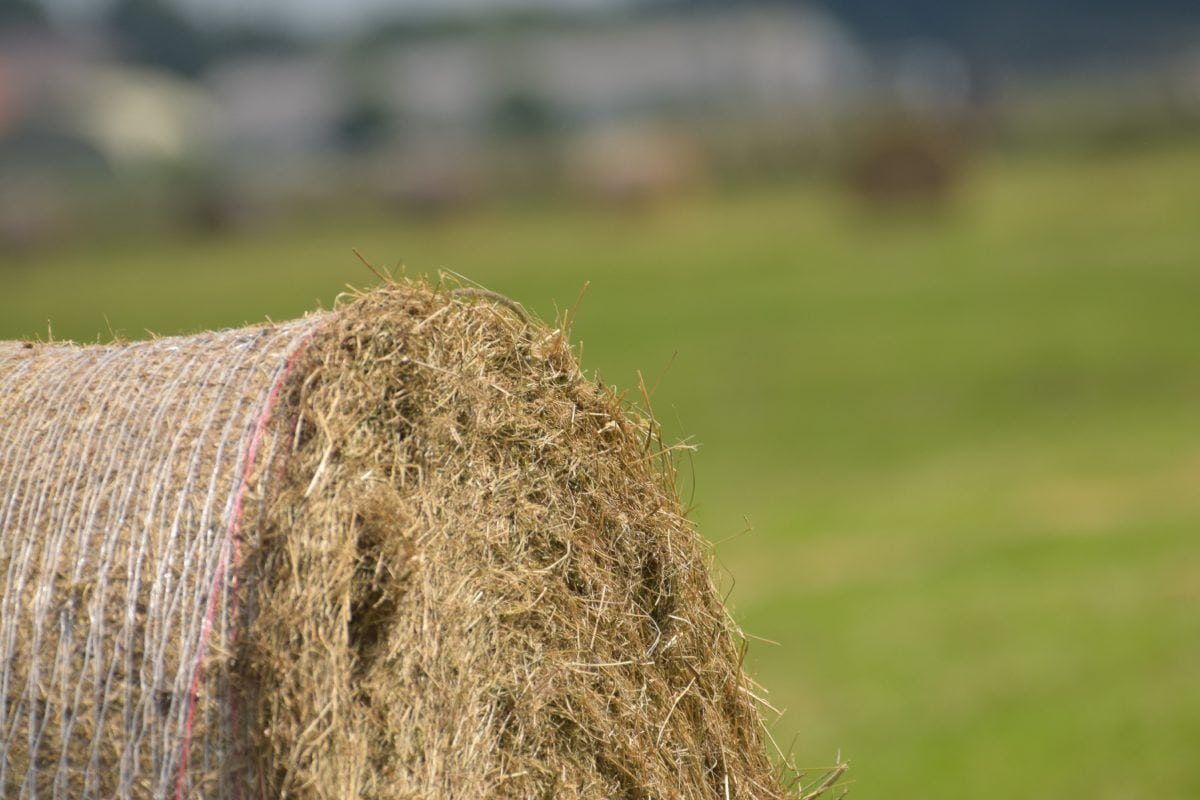 straw, haystack, countryside, nature, grass, agriculture, field