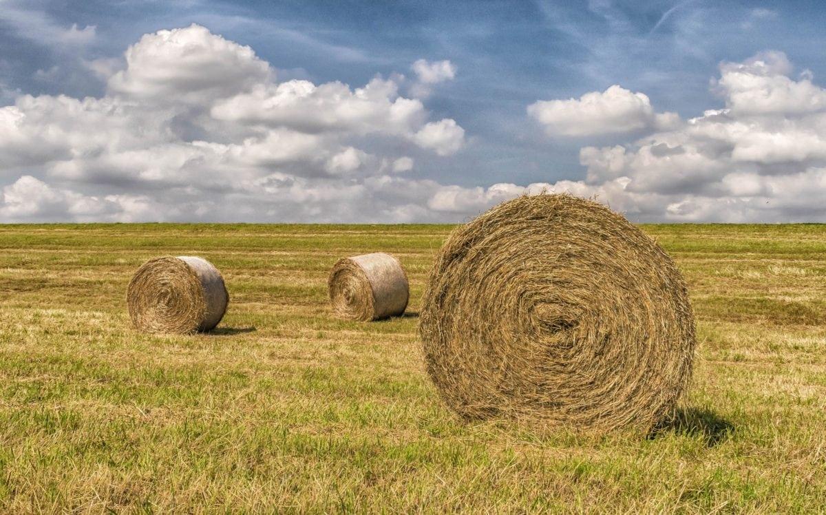 stóg siana, rolnictwo, pole, słoma, krajobraz, pejzaż