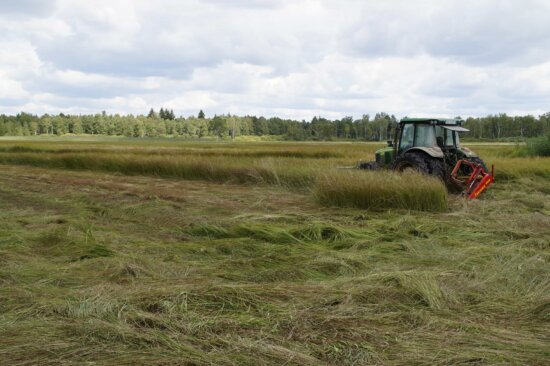 Traktor, Feld, Landschaft, Landwirtschaft, Maschine, Gras, blauer Himmel, Wiese, Fahrzeug