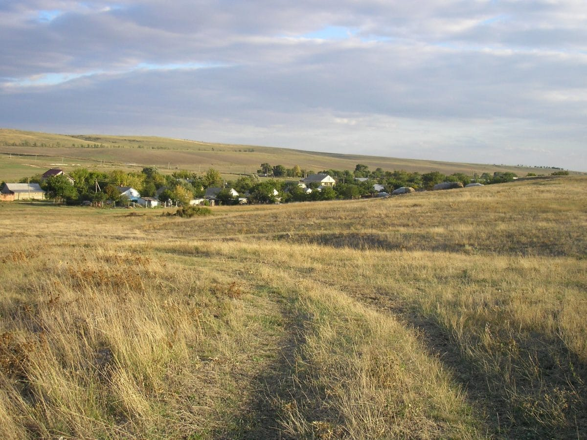 grassland, agriculture, field, daylight, blue sky, hill, landscape, grass