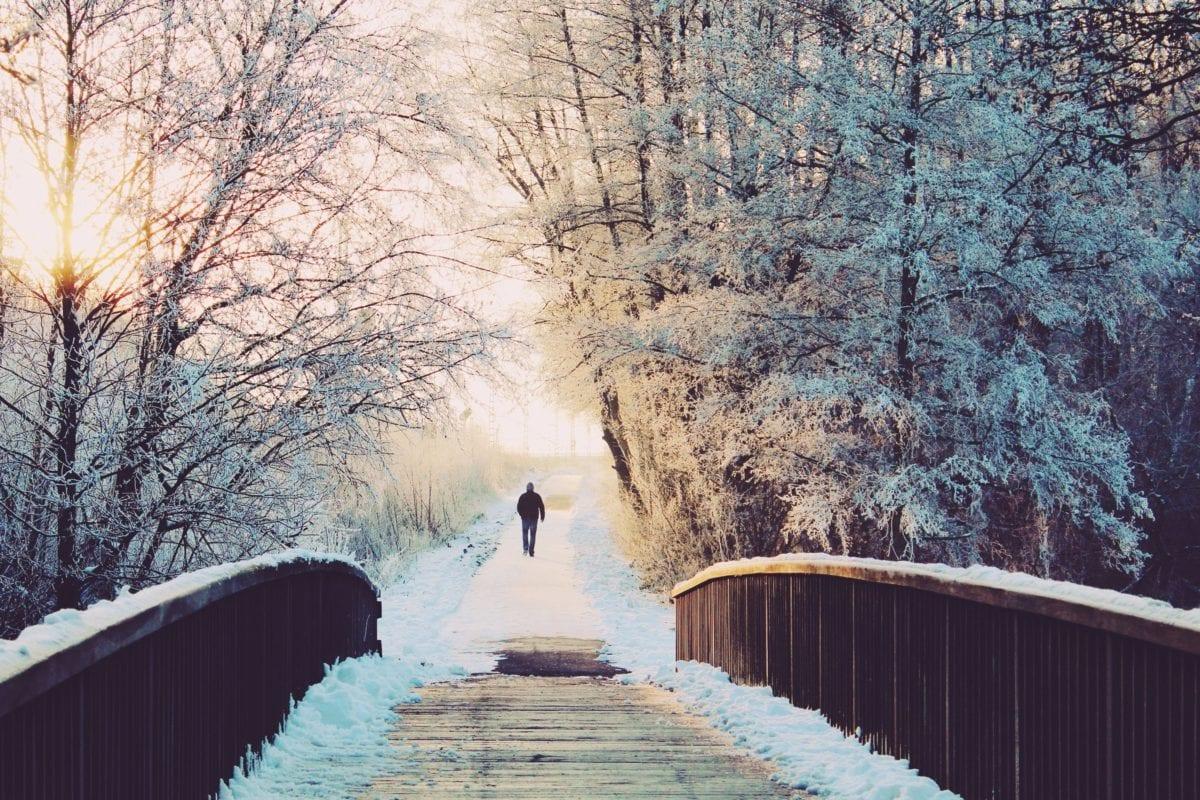 frozen, man, winter, frost, snow, tree, landscape, wood, ice, cold