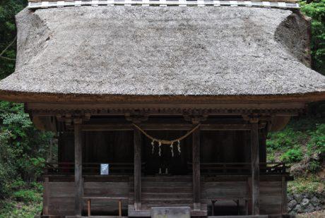 dům, dřevo, dřevěná, architektura, Došková střecha, venkovní
