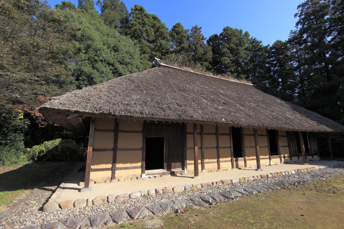 home, village, house, thatch, roof, architecture, tree, outdoor, grass