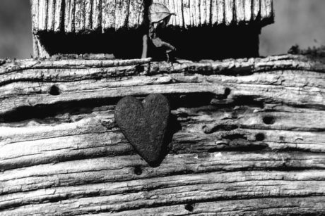 wood, relief, texture, monochrome, heart, art, old