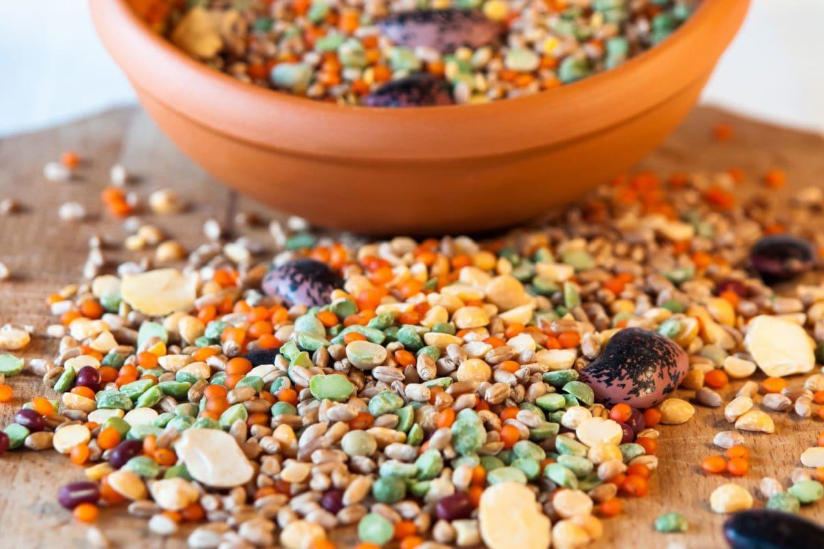 bibit, warna-warni, mangkuk, kernel, ramuan