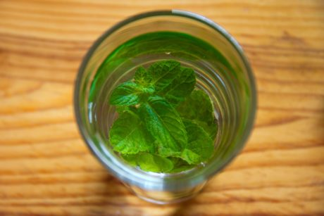 green leaf, tea, glass, herb, food, mint, drink, kitchen table, green, indoor