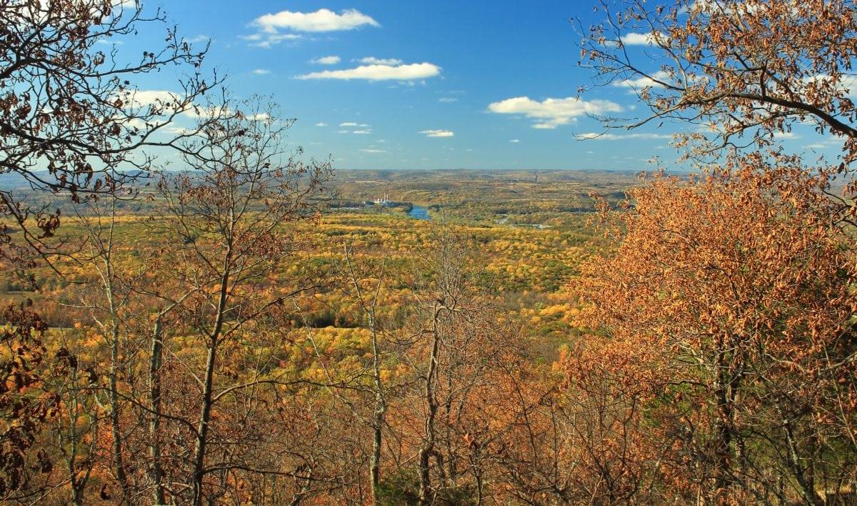 branch, blue sky, hill, leaf, tree, nature, landscape, wood, poplar, autumn
