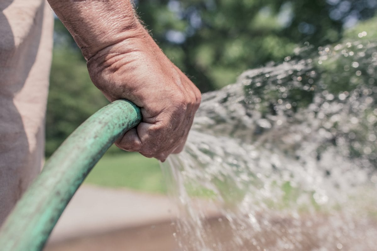 plastic hose, hand, water, hand tool, nature, person, outdoor
