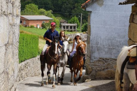 persone, cavallo, cowboy, strada, evento, animale, all'aperto, terra