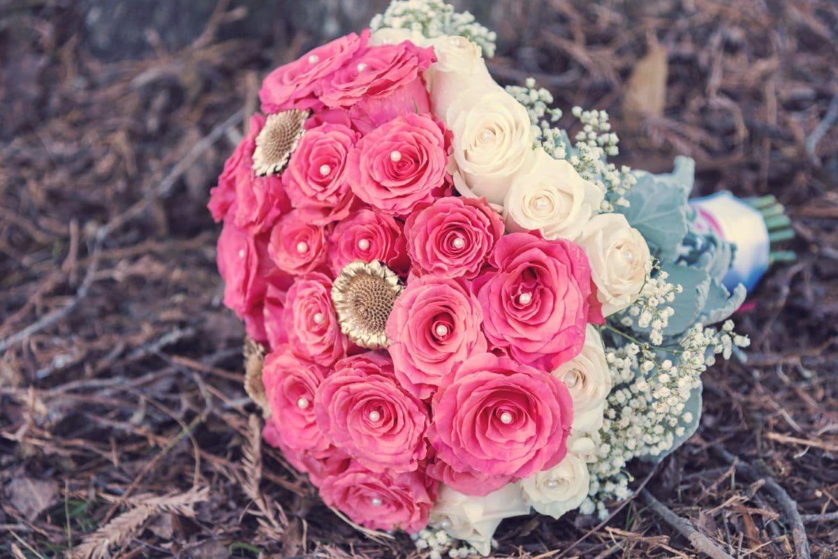 bouquet, still life, flower, nature, rose, arrangement, pink, petal, blossom