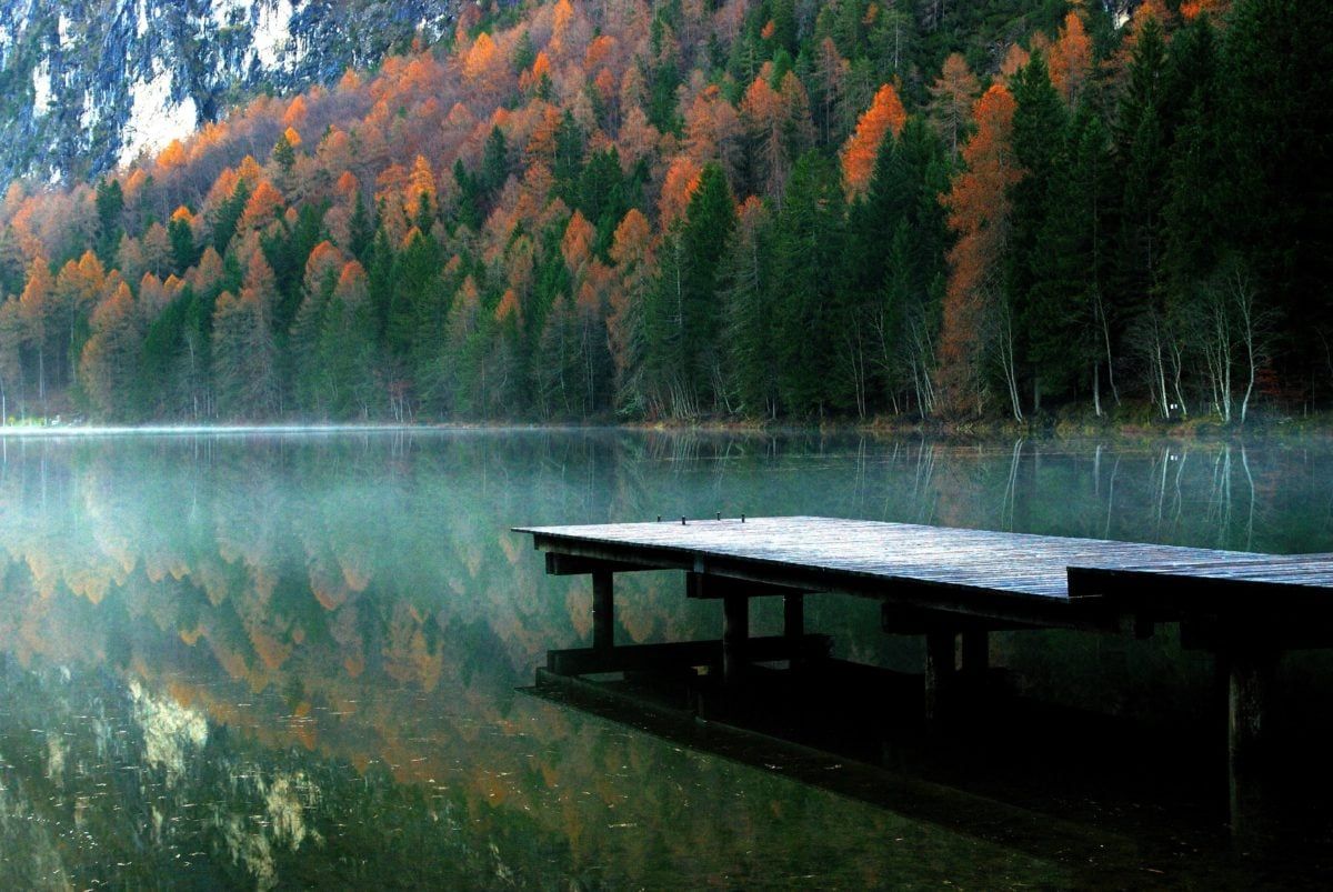 tree, autumn, wood, water, lake, reflection, furniture, landscape