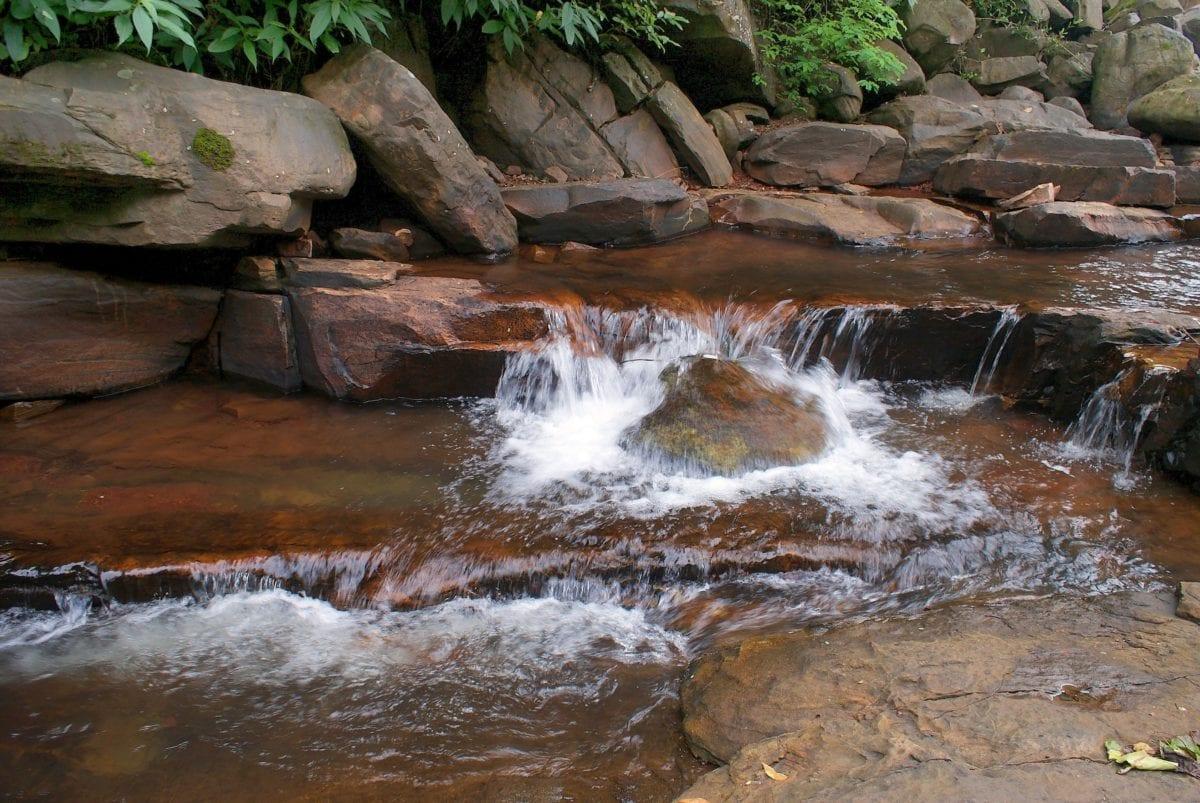 Siang hari, aliran, kayu, sungai, batu coklat, air, alam, pemandangan