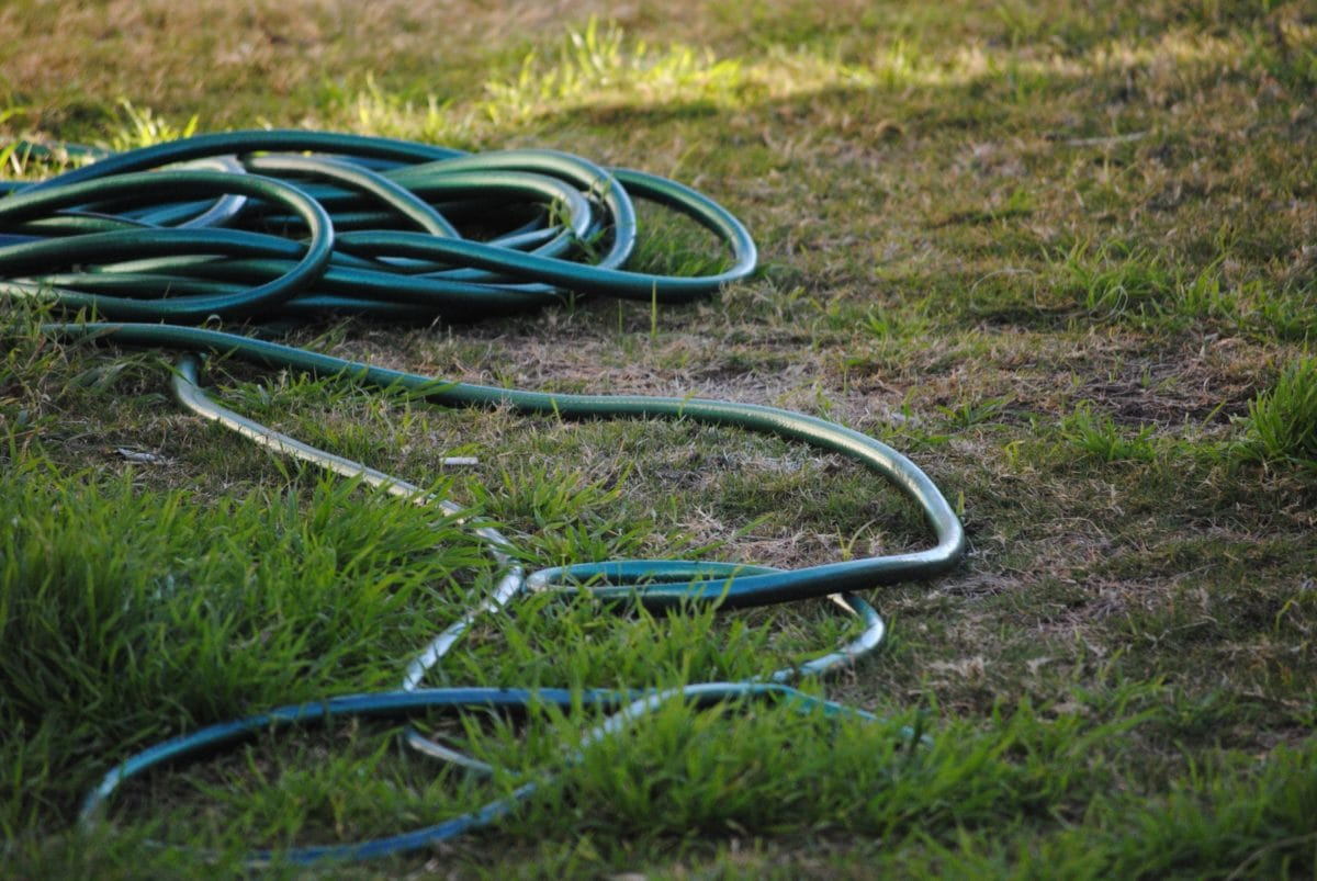 plastic hose, green grass, nature, object, tool, material, outdoor, lawn