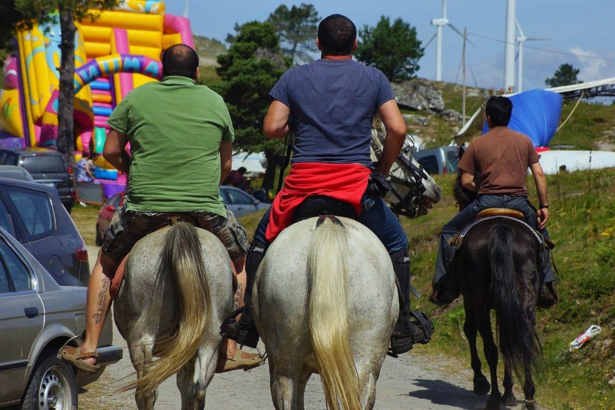 събитие, хора, кон, животните, каубой, на открито