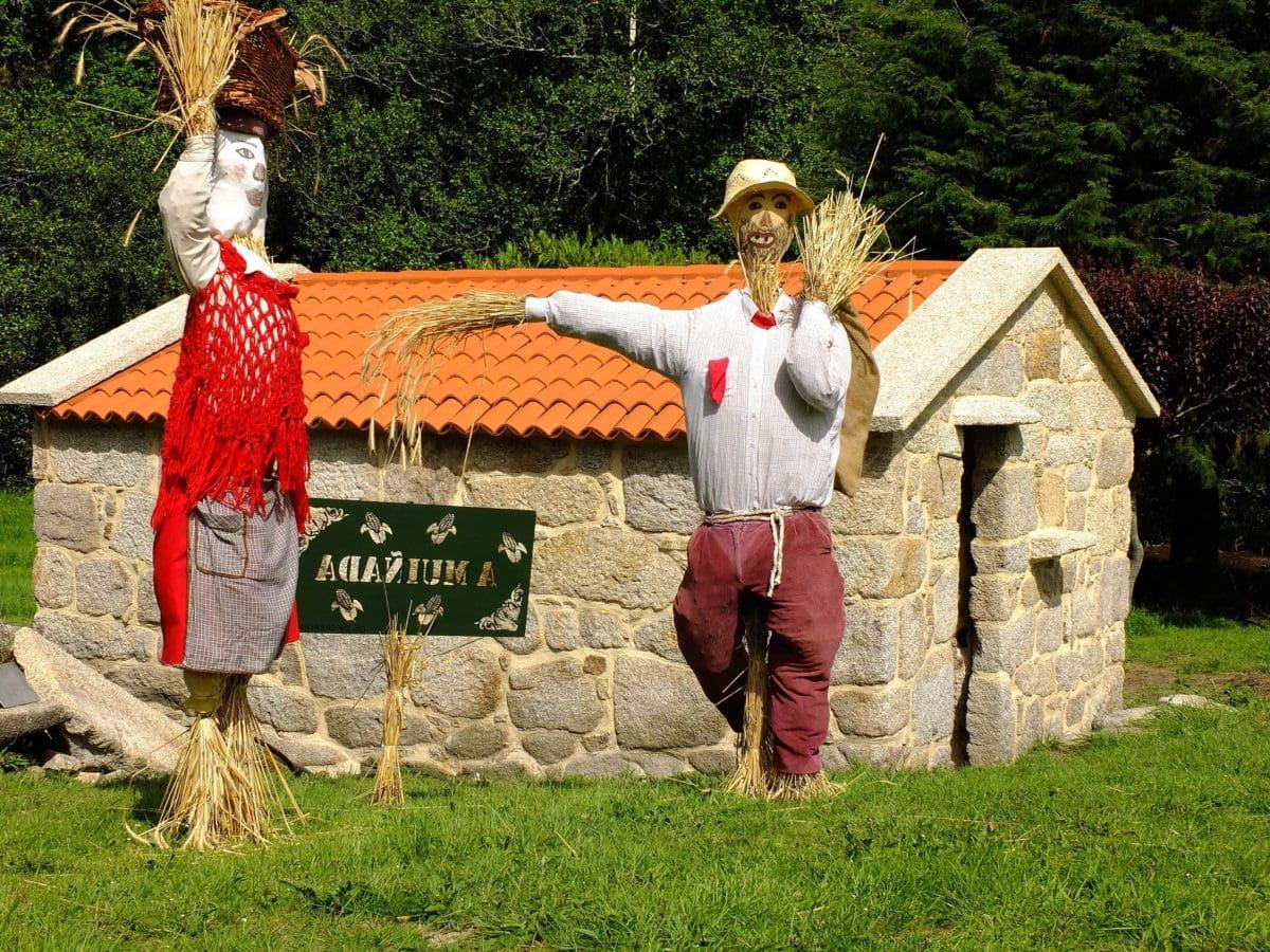 scarecrow, grass, farmland, outdoor, tree, object