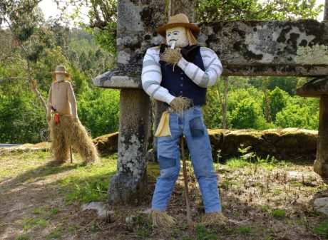 scarecrow, object, daylight, grass, farmland, outdoor, tree