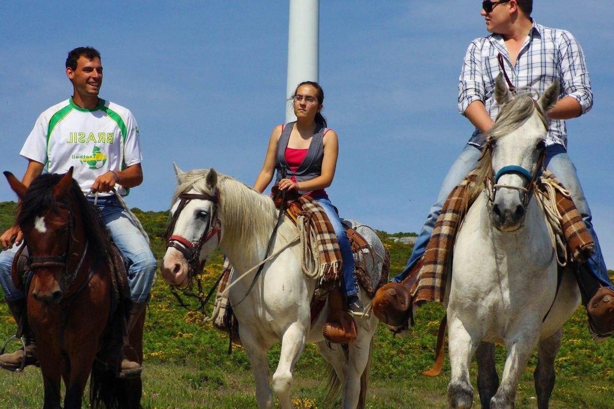 хора, кавалерия, мъж, бял кон, животните, каубой, трева, на открито