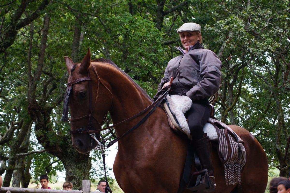 people, cavalry, horse, saddle, bridle, animal, stallion