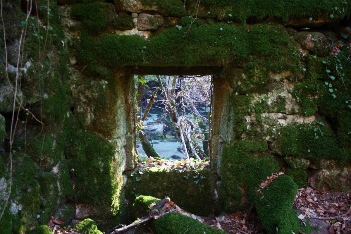Каменная стена, мох, дерево, дерево, пейзаж, камень, окно, на открытом воздухе
