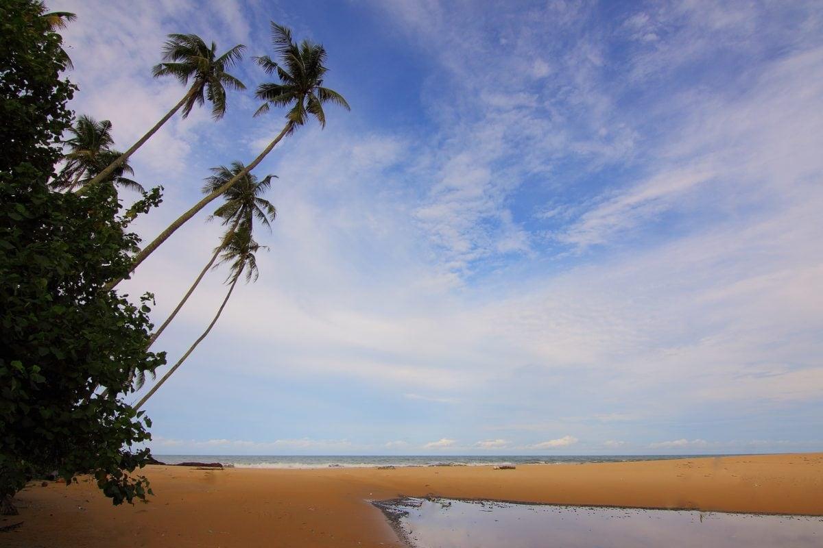 water, blue sky, tree, beach, palm, ocean, sand, sea, island, paradise