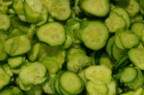 zelenina, potraviny, byliny, koření, okurky, dieta, zelený salát