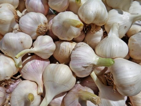 garlic, food, nutrition, organic, spice, antioxidant, onion, vegetable