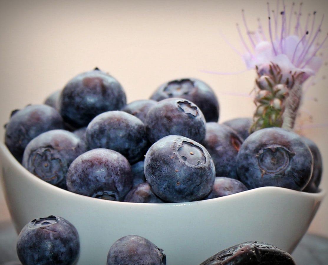 bobica, voće, slatko, hrana, borovnica, dijeta, luk, organska,, desoracija