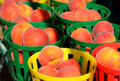 Essen, Pfirsich, Obst, Süßigkeit, Schüssel, Obst, Bio, Korb