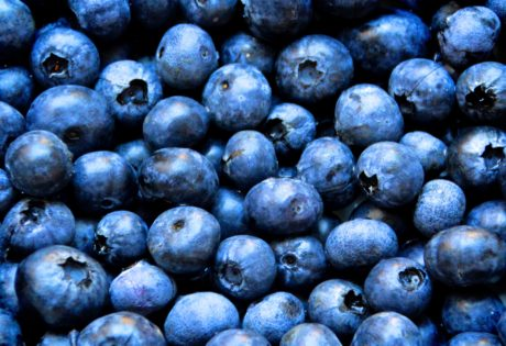 berry, food, fruit, antioxidant, blueberry, detail, organic, vitamin