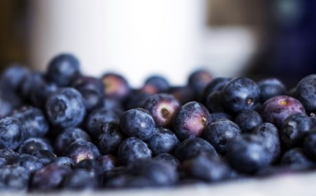 food, blueberry, berry, fruit, sweet, diet, indoor