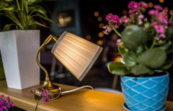 meubles, lampe, objet, décoration intérieure, table, pot de fleur, lumière, ombre