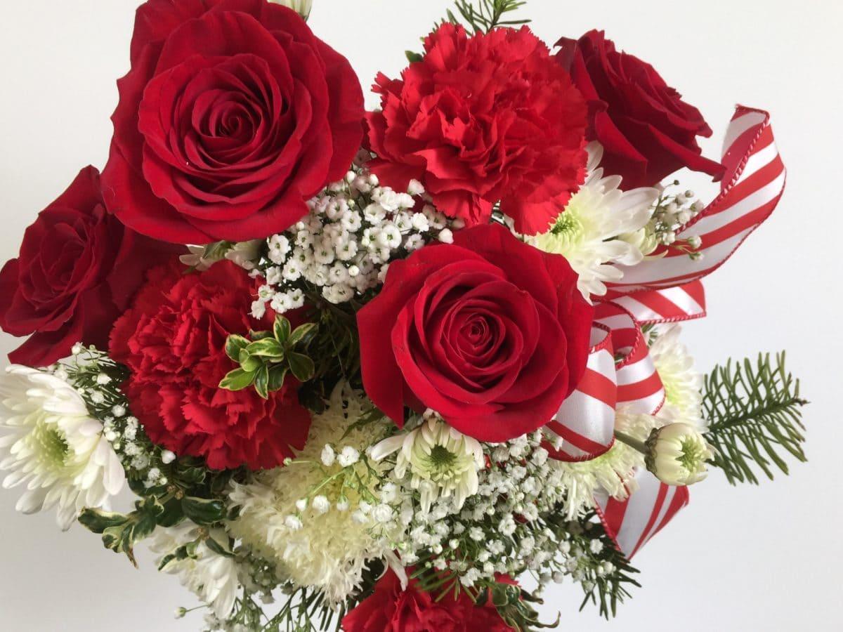 ruža, latica, cvijet, dar, aranžman, Blossom, Leaf