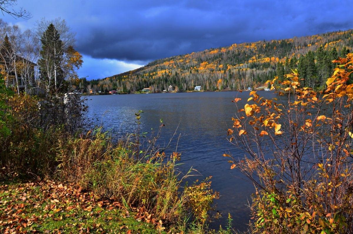 φύση, δέντρο, νερό, τοπίο, ξύλο, αντανάκλαση, λίμνη, δάσος