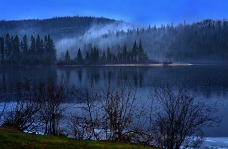 night, darkness, landscape, water, tree, lake, conifer, wood, dawn, reflection