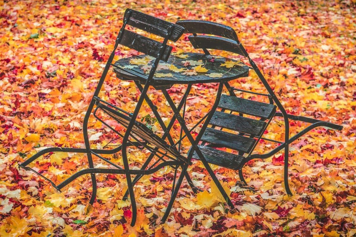 móveis, outono, cadeia, velho, ao ar livre, objeto, folhas amarelas