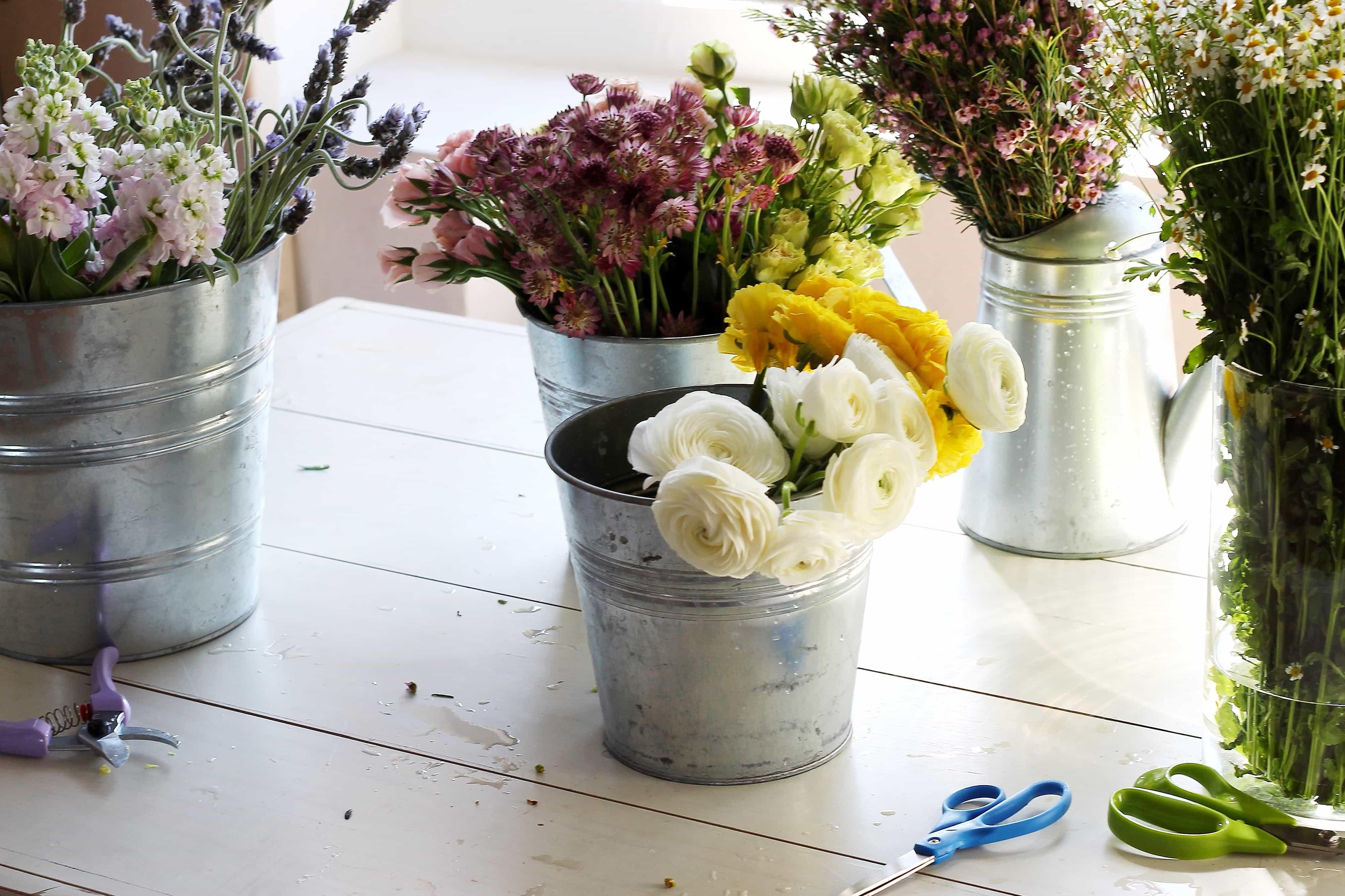 Gratis Billede Urtepotte Blomst Stilleben Dekoration Vase