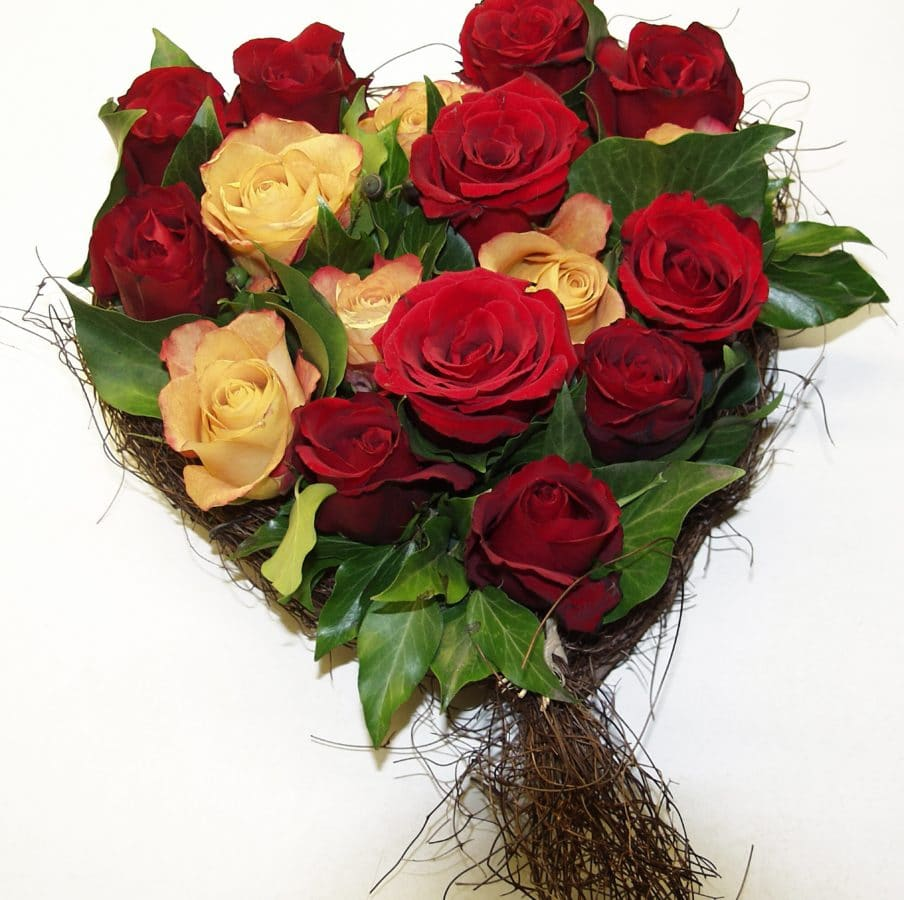 flower, petal, rose, bouquet, gift, decoration, arrangement, plant