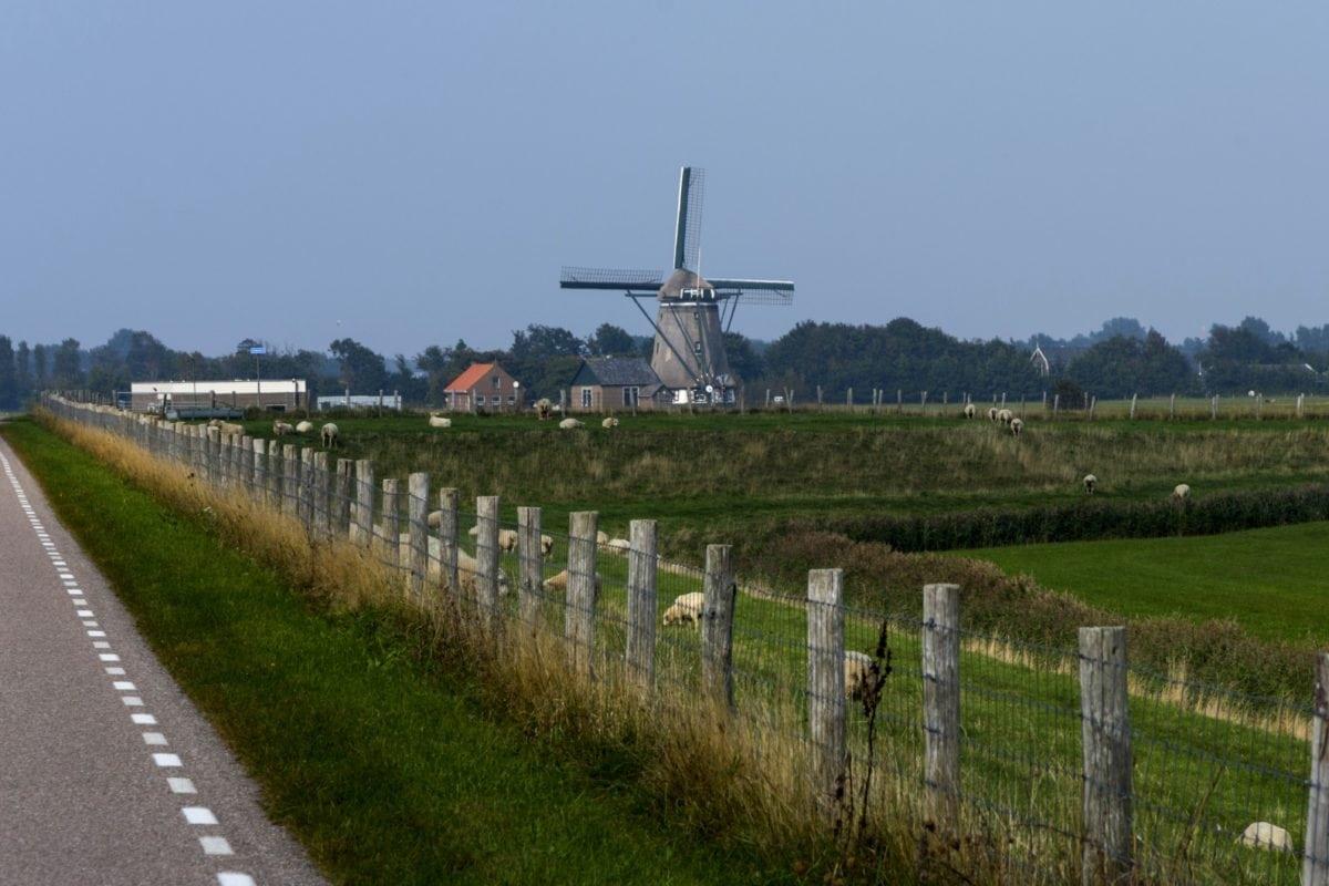 moinho de vento, céu azul, paisagem, grama, cerca, estrada, campo, ao ar livre